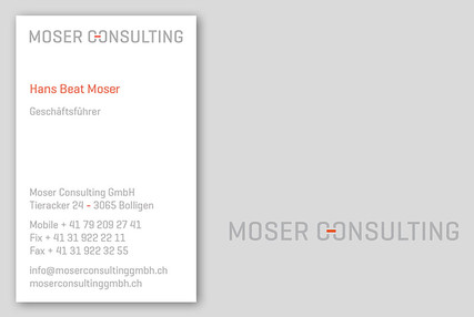 Moser Consulting I Bolligen